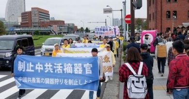 Япония, Фалуньгун, парад